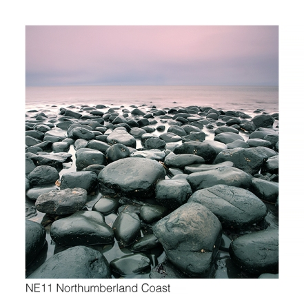 NE11 Northumberland Coast web 1095