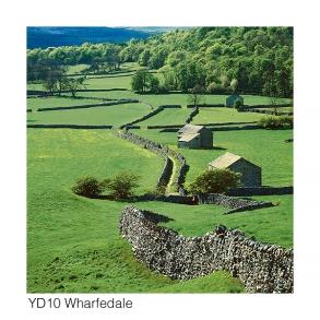 YD10 Wharfedale GCs web
