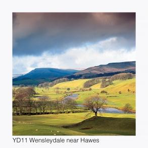 YD11 Wensleydale near Hawes GCs web
