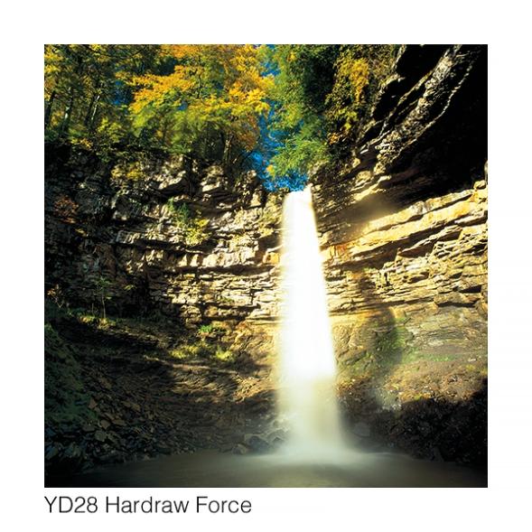 YD28 HardrawGCs web 4374