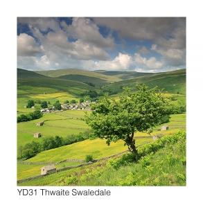 YD31 Thwaite Swaledale GCs web 2177