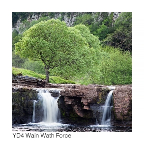 YD4 Wain Wath Force GCs web 5323