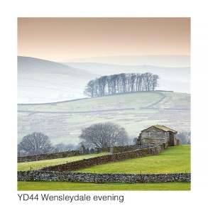 YD44 Wensleydale evening GCs web