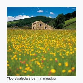YD6 Swaledale Barn in a Meadow GCs web