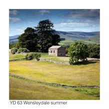 YD63 Wensleydale summer GCs web