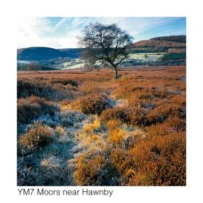 YM7 Moors near Hawnby GCs web